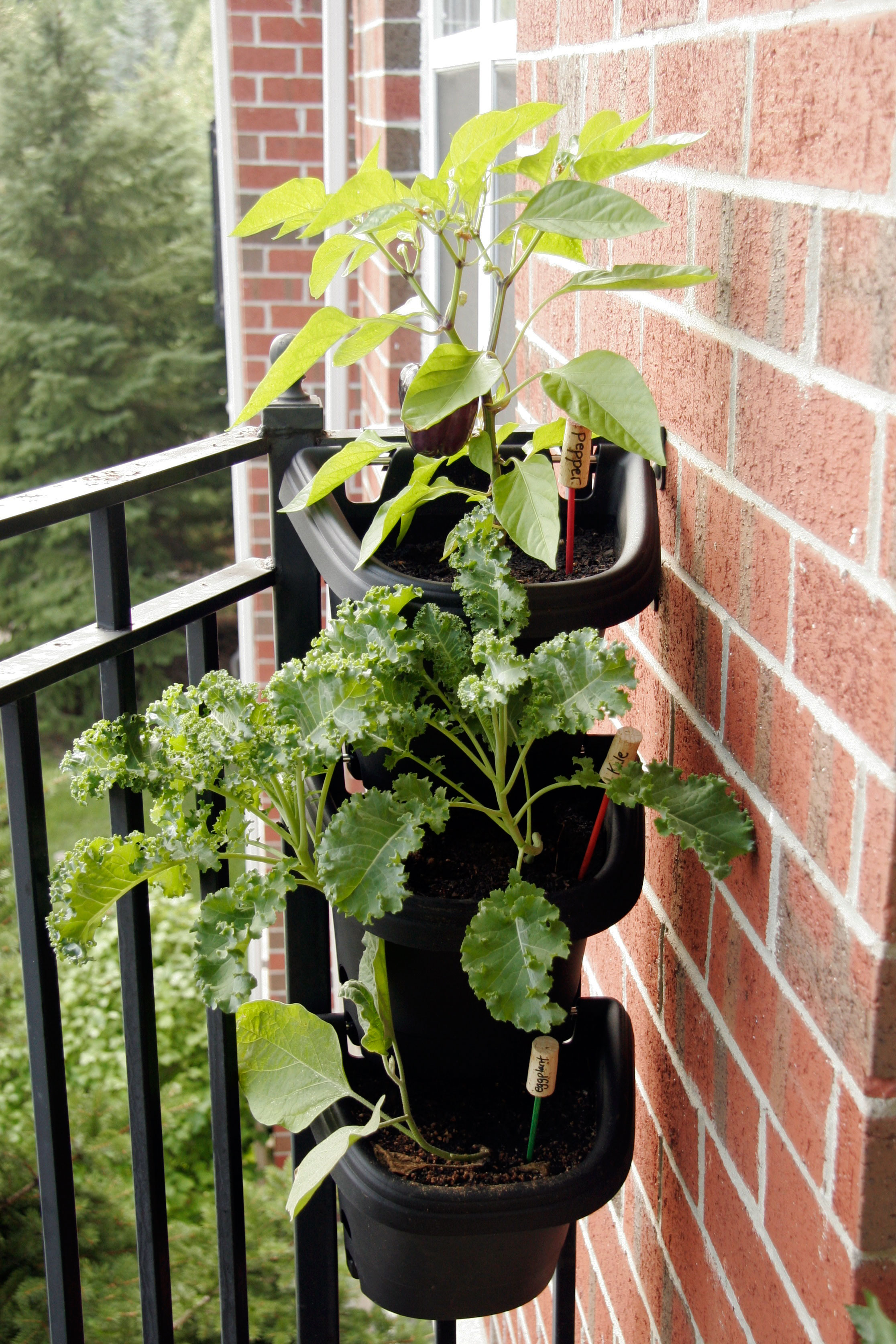 Tips for decorating a small apartment balcony all put for Balcony planters